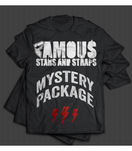 Famous MYSTERY PACKAGE / 3 Herren Shirts