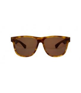 Filtrate Sonnenbrille Calloway Tort Bronze
